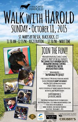Walk with Harold & Friends 2015